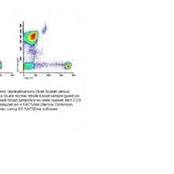 CD3 FITC/CD8 PE CE-IVD