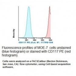 CD117  MONOCLONAL ANTIBODY